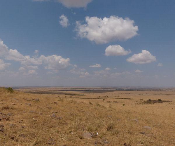 Masai Mara BARAKA SAFARI
