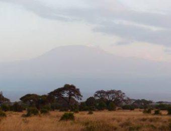 Safari Amboseli BARAKA