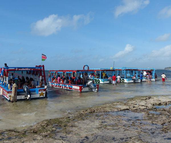 Safari Blu Isola Delle Mangrovie BARAKA SAFARI KENYA