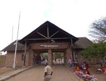 Safari Masai Mara Kenya BARAKA