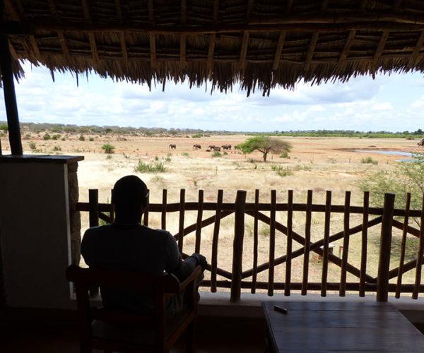 Safari Kenya Tsavo Est Terrazza