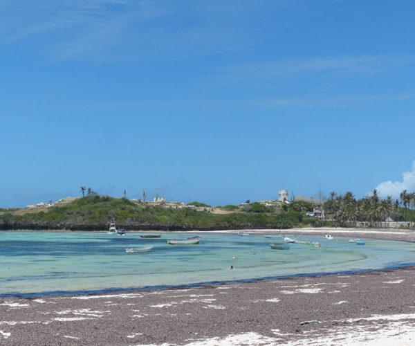 Spiaggia WATAMU Kenya Safari Mare