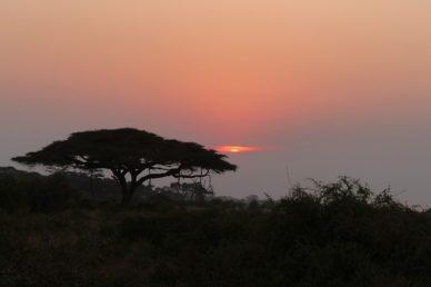 Tramonto parco Amboseli