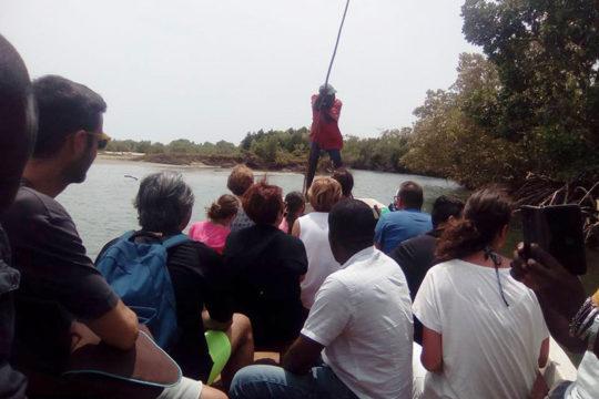 escursione-isola-delle-mangrovie