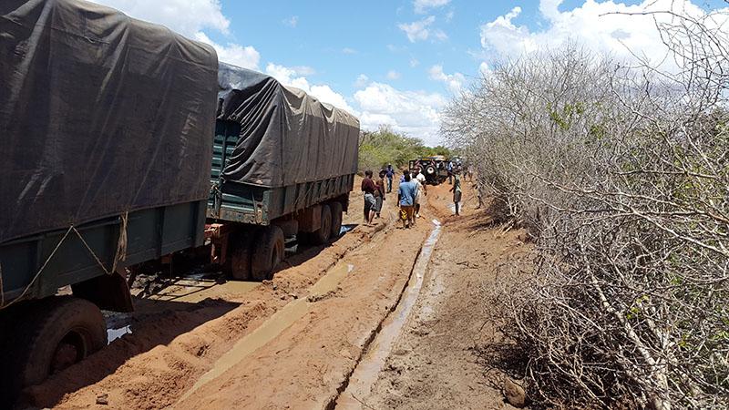 quando-andare-in-safari-in-kenya