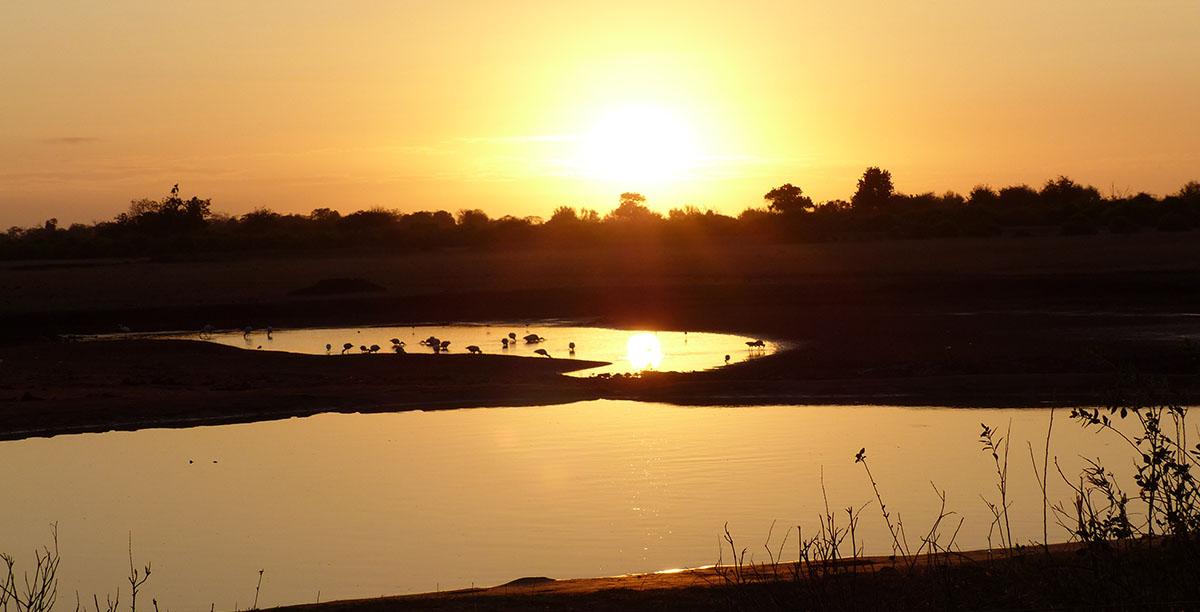 safari-in-kenya-tramonto