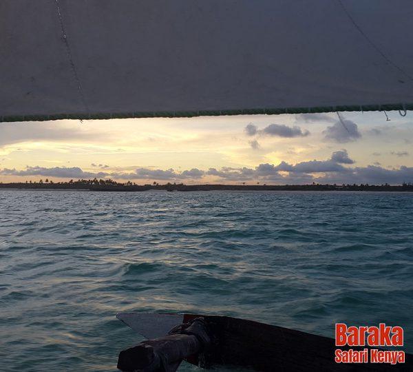 escursione-isola-mangrovie-barakasafarikenya-11
