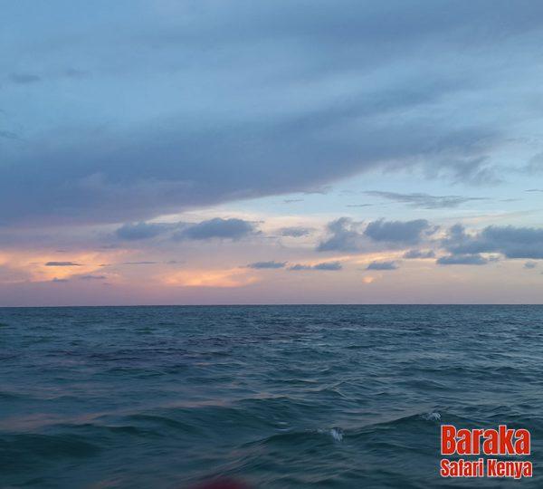 escursione-isola-mangrovie-barakasafarikenya-12