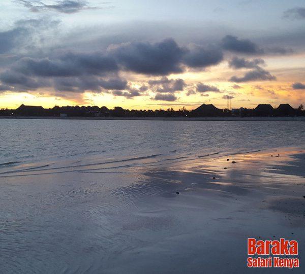 escursione-isola-mangrovie-barakasafarikenya-13