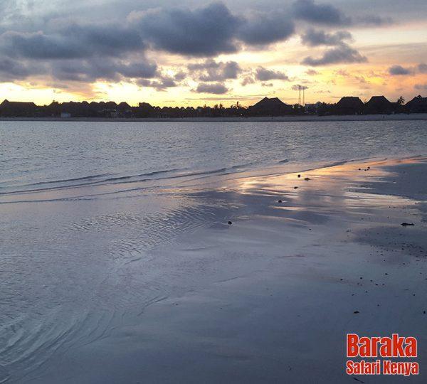 escursione-isola-mangrovie-barakasafarikenya-14