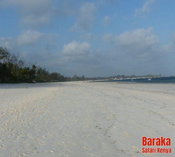 escursione-isola-mangrovie-barakasafarikenya-18