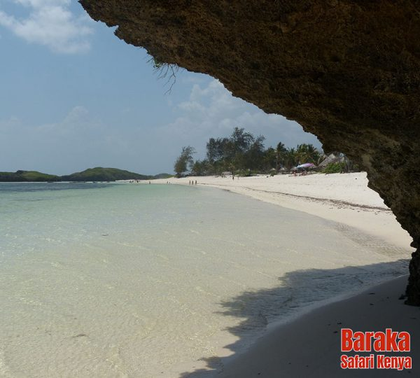escursione-isola-mangrovie-barakasafarikenya-19