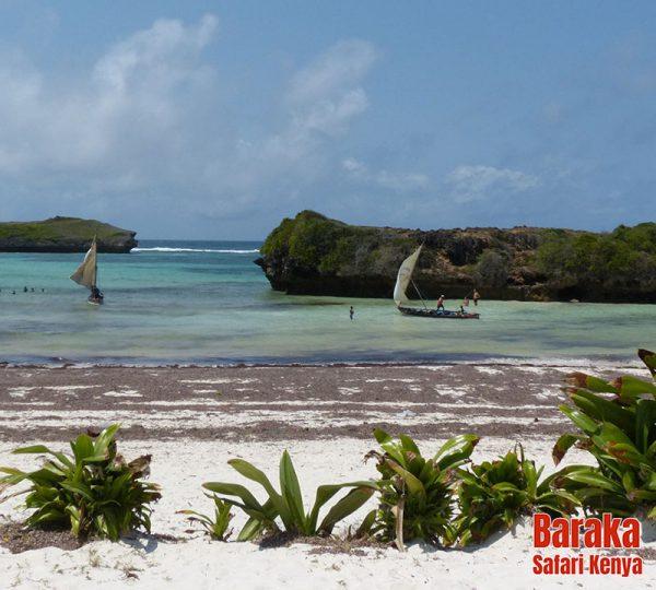 escursione-isola-mangrovie-barakasafarikenya-21