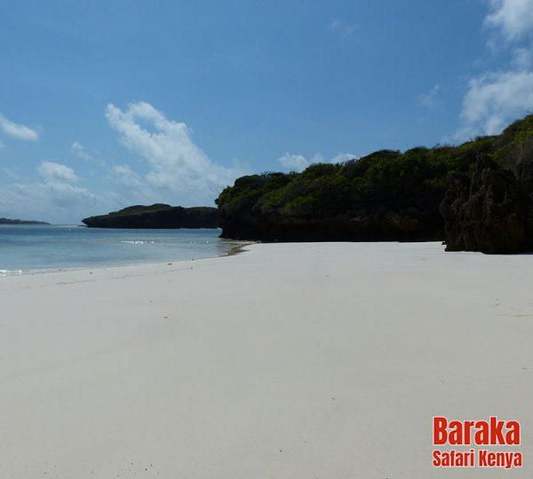 escursione-isola-mangrovie-barakasafarikenya-23