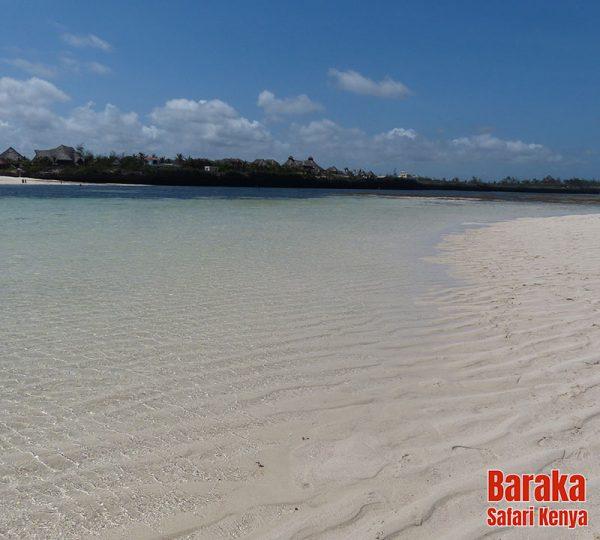 escursione-isola-mangrovie-barakasafarikenya-25