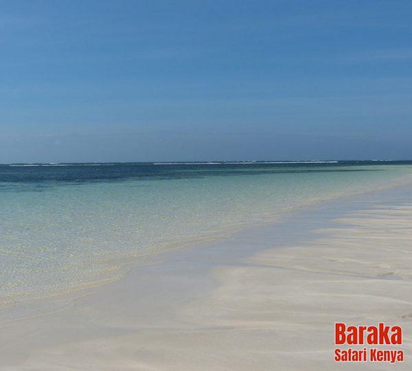 escursione-isola-mangrovie-barakasafarikenya-30