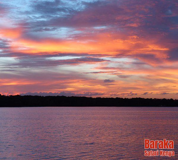 escursione-isola-mangrovie-barakasafarikenya-39