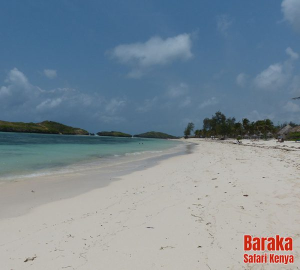 escursione-isola-mangrovie-barakasafarikenya-44