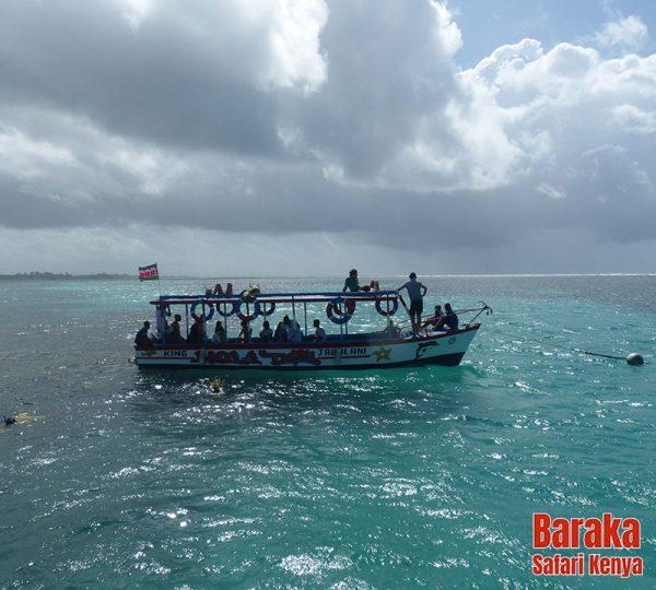escursione-isola-mangrovie-barakasafarikenya-46