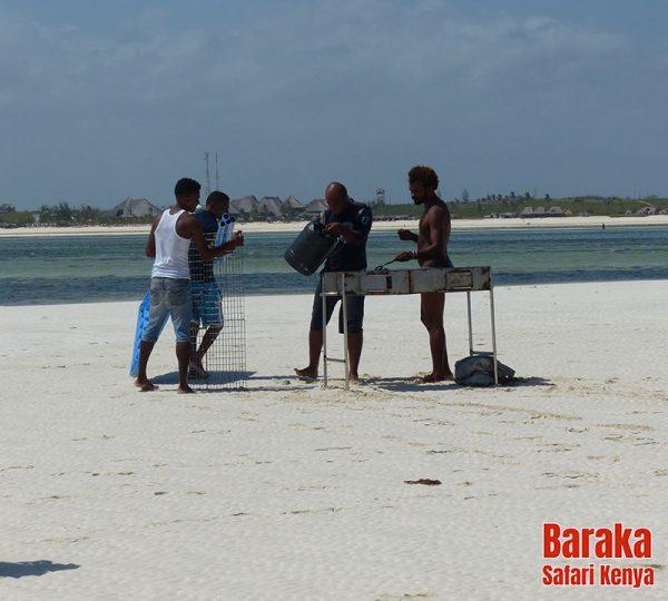 escursione-isola-mangrovie-barakasafarikenya-47