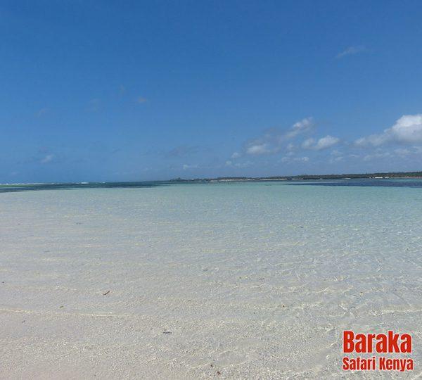 escursione-isola-mangrovie-barakasafarikenya-49
