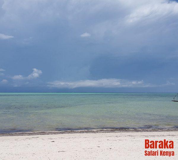 escursione-isola-mangrovie-barakasafarikenya-5