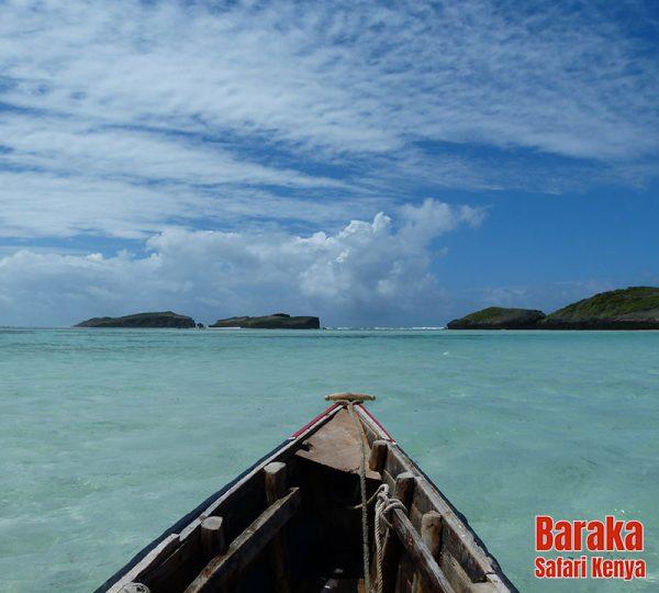 escursione-isola-mangrovie-barakasafarikenya-50