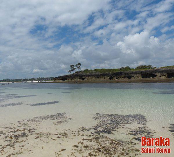 escursione-isola-mangrovie-barakasafarikenya-52