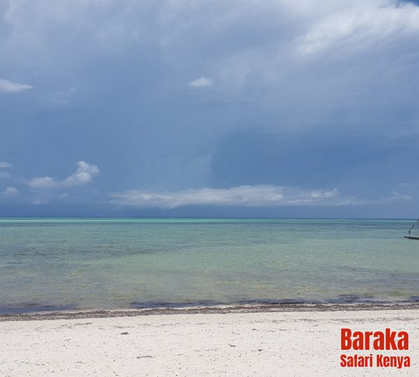 escursione-tourgold-barakasafarikenya8