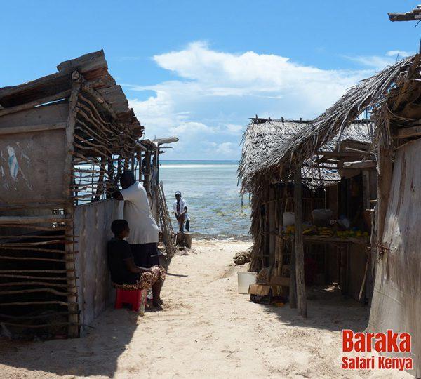 escursione-vita-africana-barakasafarikenya12