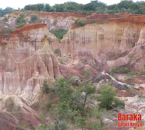 escursione-watamu-marafa-barakasafarikenya-2
