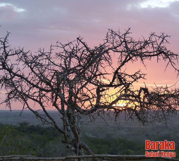 escursione-watamu-marafa-barakasafarikenya-5