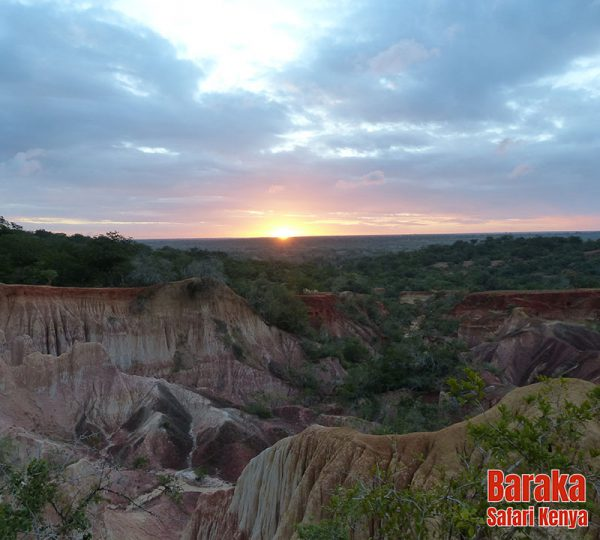 escursione-watamu-marafa-barakasafarikenya-7