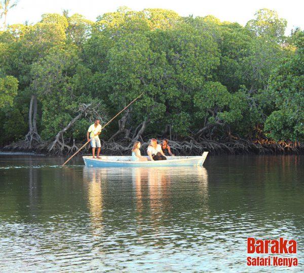 escursione-watamu-mida-creek-barakasafarikenya-7