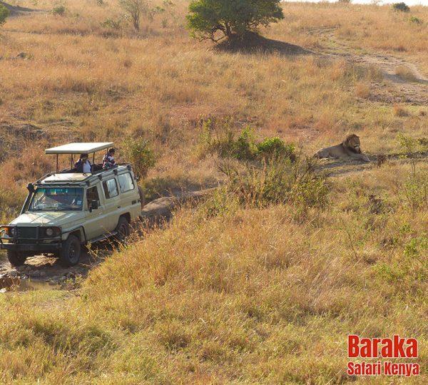 safari-kenya-barakasafarikenya-70