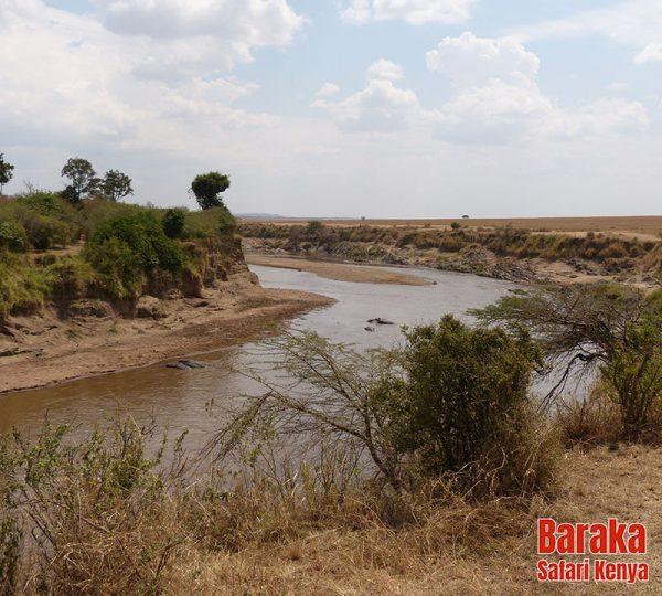 safari-masai-mara-barakasafarikenya-28