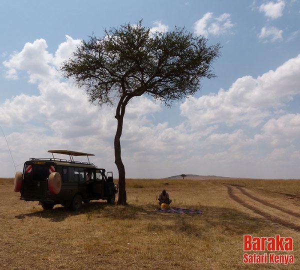 safari-masai-mara-barakasafarikenya-29