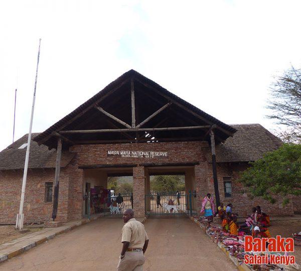safari-masai-mara-barakasafarikenya-3