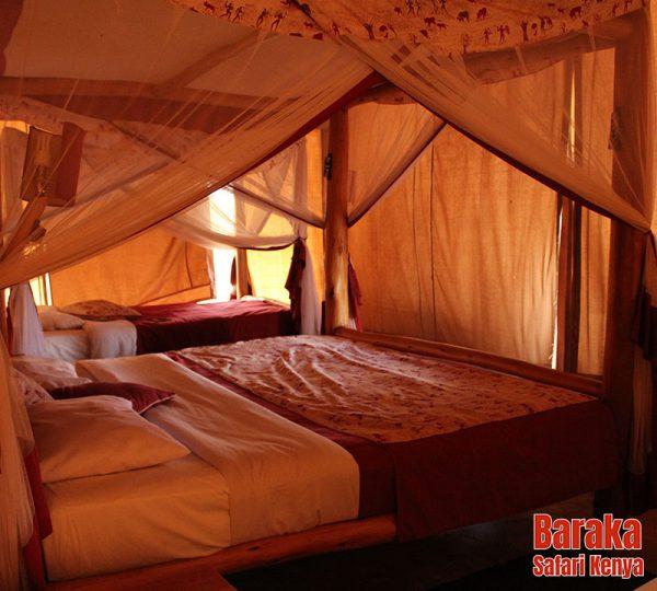 safari-tsavo-est-ovest-amboseli-barakasafarikenya-26