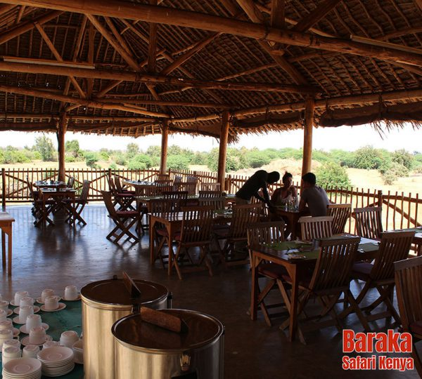 safari-tsavo-est-ovest-amboseli-barakasafarikenya-30