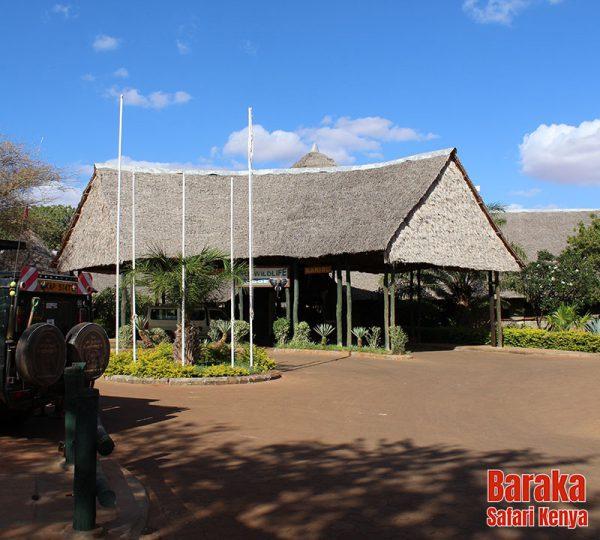 safari-tsavo-est-ovest-amboseli-barakasafarikenya-37
