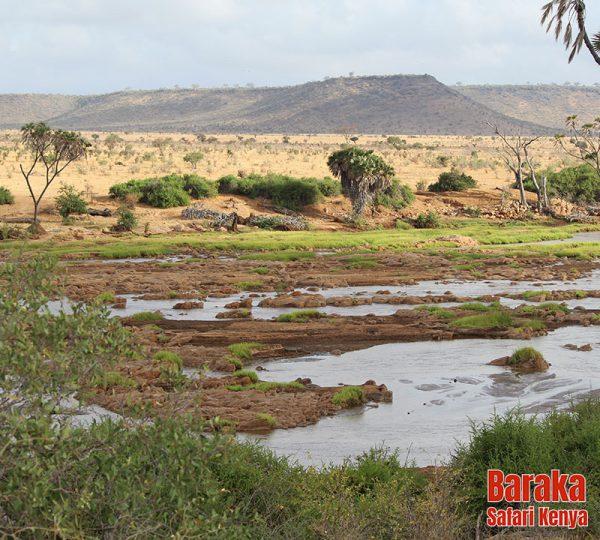 safari-tsavo-est-ovest-amboseli-barakasafarikenya-43