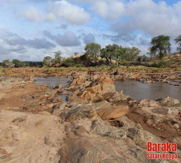 safari-tsavo-est-ovest-amboseli-barakasafarikenya-45