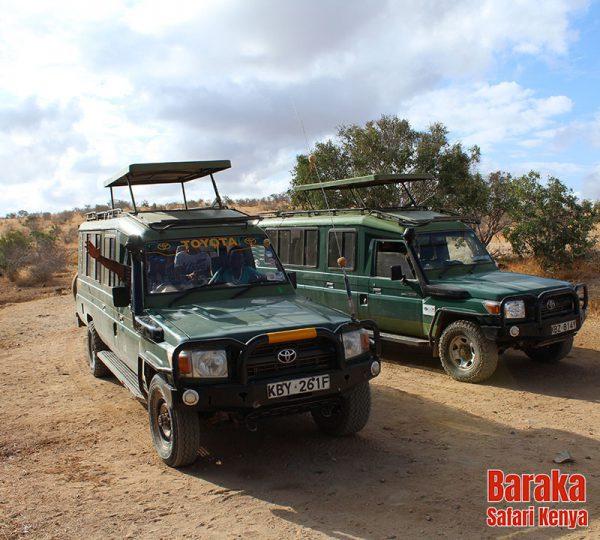 safari-tsavo-est-ovest-amboseli-barakasafarikenya-47