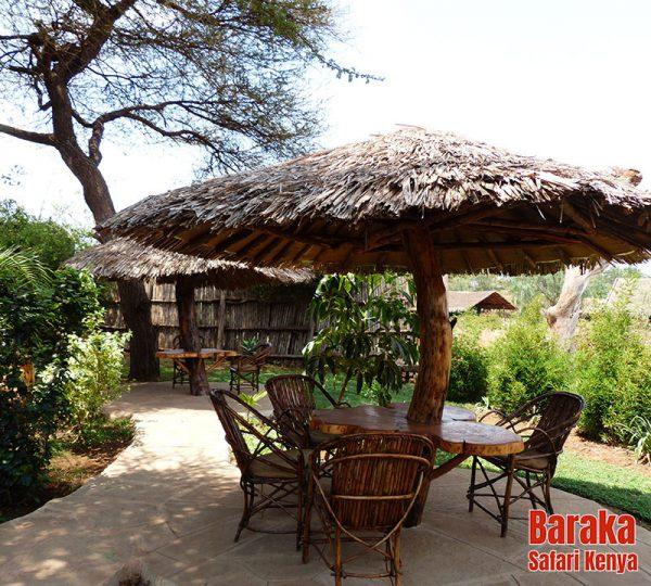 safari-tsavo-est-ovest-amboseli-barakasafarikenya-51