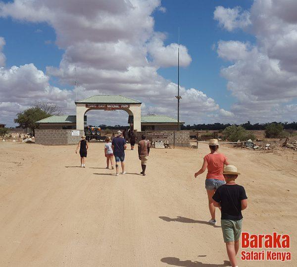 safari-tsavo-est-ovest-amboseli-barakasafarikenya-69