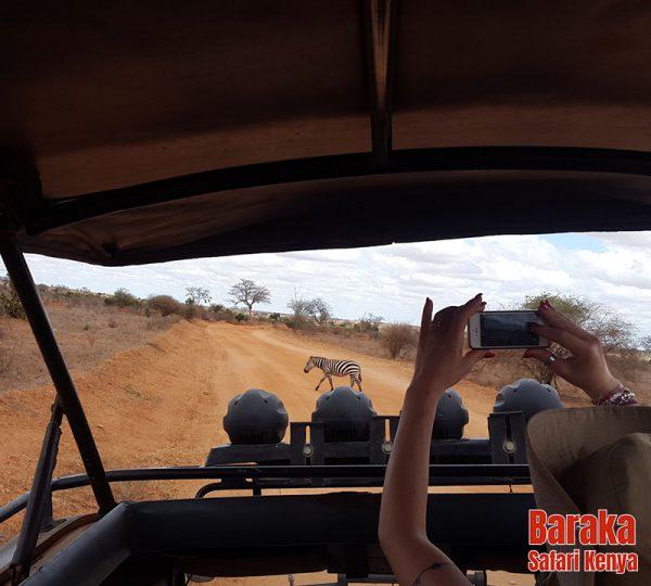 safari-tsavo-est-ovest-amboseli-barakasafarikenya-70