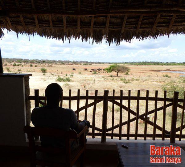safari-tsavo-est-ovest-amboseli-barakasafarikenya-76